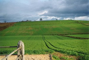 Site of the Battle of Flodden