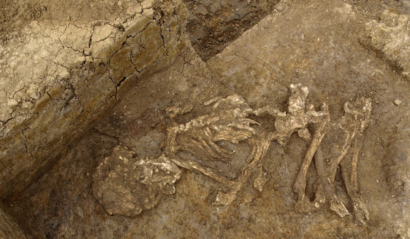 mummified skeletal remains in grave