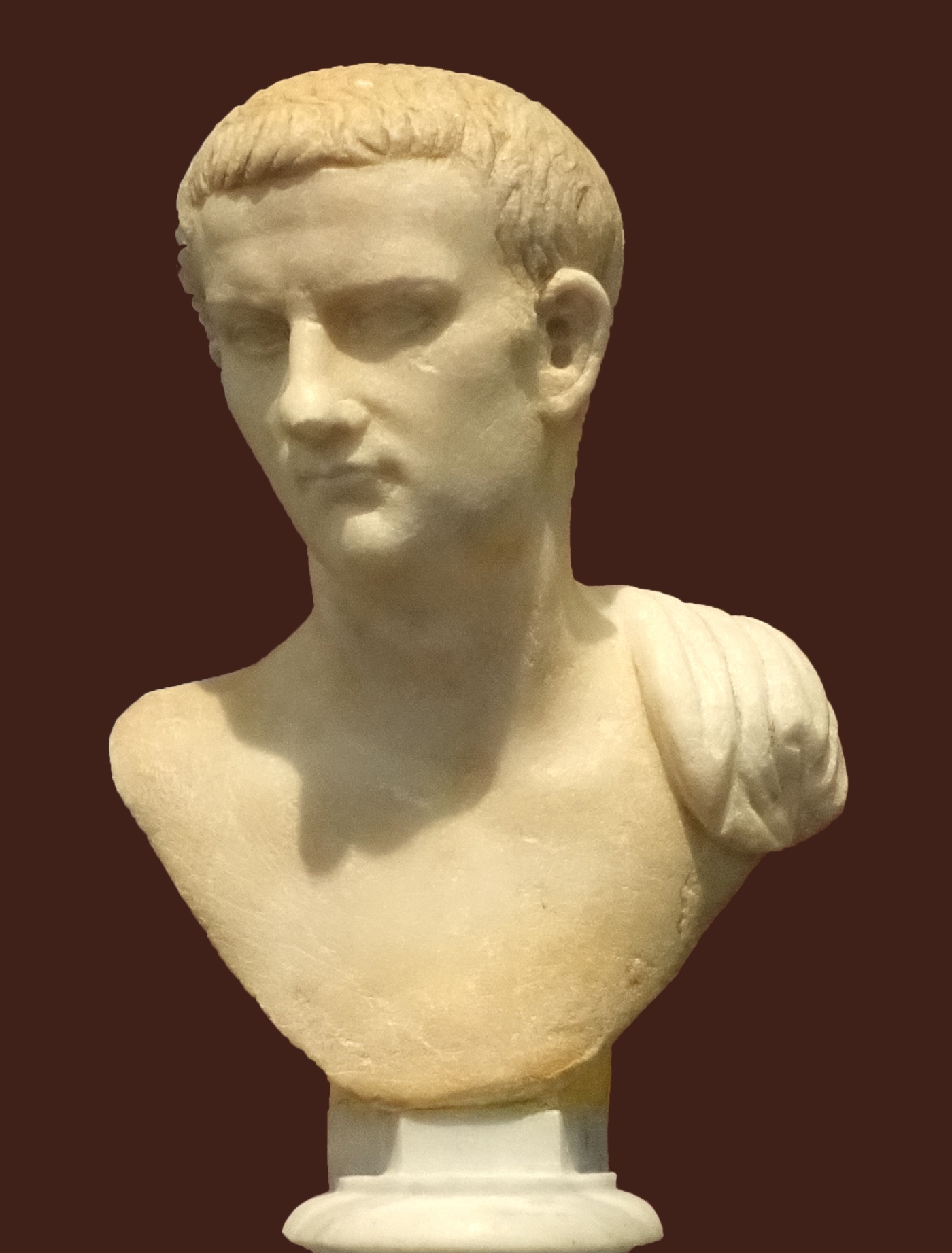 a biography of caligula the emperor of rome The emperor caligula had nero's mother exiled from rome and sent nero to be raised by his aunt caligula also stole nero's inheritance a few years later, however, caligula was killed and claudius became emperor.